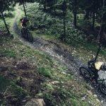 Jakie są najlepsze polskie trasy rowerowe na wakacje? Podpowiadamy